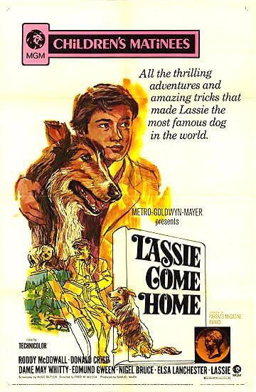 Episode 116: Lassie Come Home